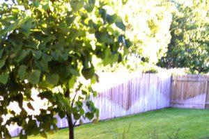Landscapers Boise ID   Landscaping Company Boise ID   Kips Clean Cut Landscaping